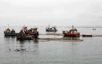 Diamond Mining Boats