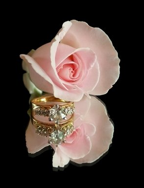 Engagement Ring Roses
