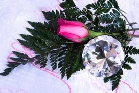 Diamond and Rose